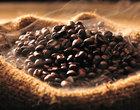 arabica fika International Coffee Organizatio Jaka kawa jest najdroższa Jerzy Franciszek Kulczycki Kawa kawiarnia Kopi Luwak najdroższa kawa Robusta Wiedeń