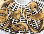 Wybieramy najlepsze suszarki do grzybów. Na co zwracać uwagę?